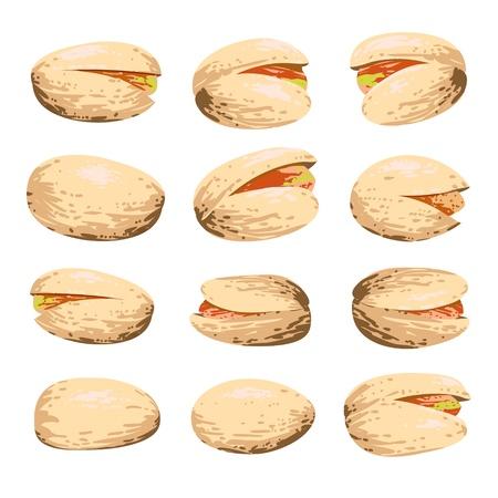 pistachio: pistachio fruit set isolated on white background Illustration