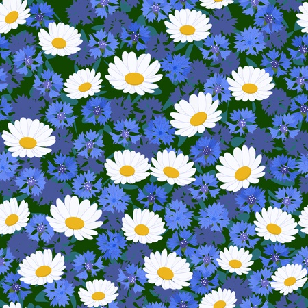 Seamless pattern with camomiles and cornflower background Vector