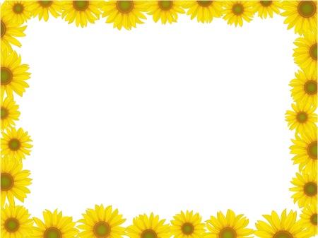 vettoriale di girasole cartolina cornice pattern di sfondo