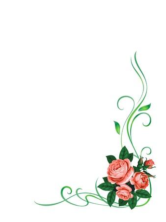 bordures fleurs: vecteur cadre roses motif de d�coration de fond isol� Illustration