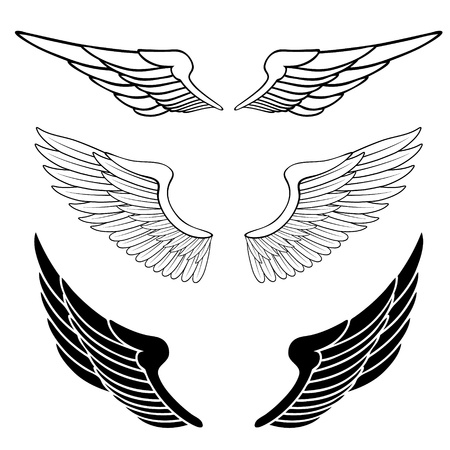 ali angelo: set di ali isolato su bianco Vettoriali