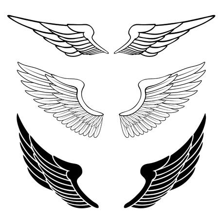 silueta de angel: un conjunto de alas aisladas en blanco