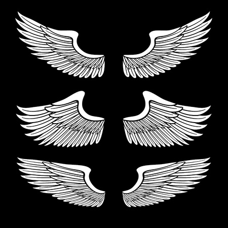 flapping: white angel wings set isolated on black Illustration
