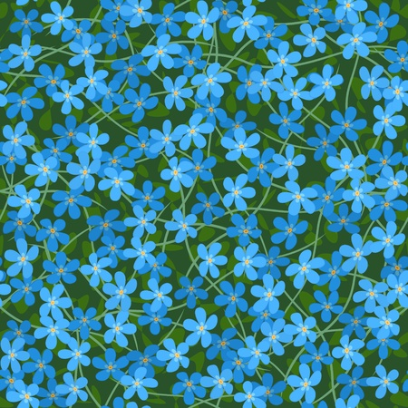 forget me not seamless flowers background Vector