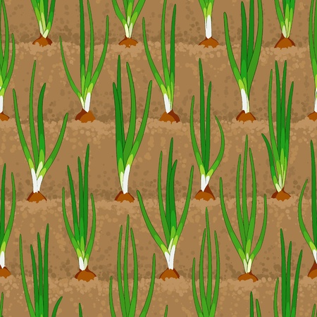 onion sprout, shoot vegetable patches in row seamless background Illustration