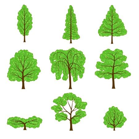 Juego de corona de árboles de diferente aisladas en blanco