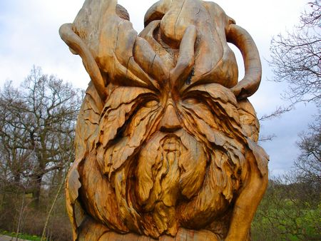 woodland sculpture: Timber Shape                      Stock Photo