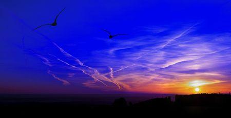twain: Morning Birds