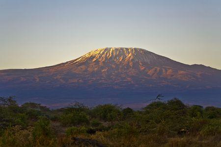 kilimanjaro: Kilimanjaro Morning Stock Photo