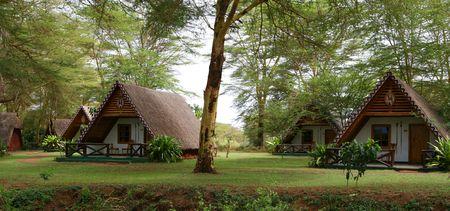 African Camp Stock fotó