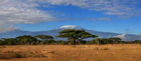 Kilimanjaro Wide photo