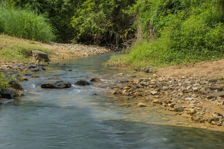 Rocky little stream with lush green vegetation in tropical Vietnam. Stock Photo