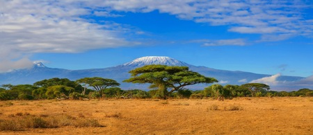 Kilimanjaro mountain Tanzania snow capped under cloudy blue skies captured whist on safari in Africa Kenya. Archivio Fotografico