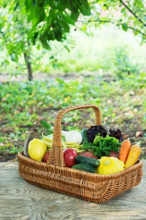 Fresh vegetables in basket in the garden outdoors