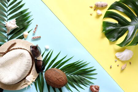 Summer, tropical  turquoise and yellow background with a straw hat, coconut, sunglasses. Monstera leaves and palm trees, sea shells .