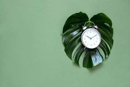 Creative minimalistic composition with an alarm Clock on a monstera sheet. Time to love. Top view
