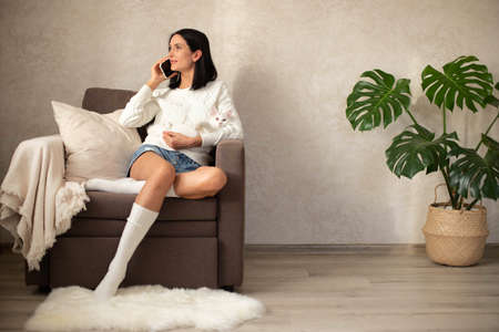 The girl is resting in a chair, holding a white kitten in her arms, drinking tea, talking on the phone, ordering goods online. Shopping on the couch. The interior is minimalist. Standard-Bild