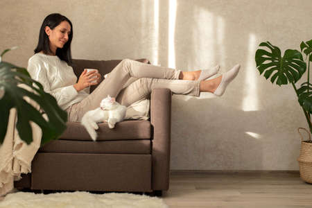 The girl is resting in a chair, drinking tea, reading a book, shopping on the phone. Shopping on the couch. The interior is minimalist. A white kitten is lying in a chair.