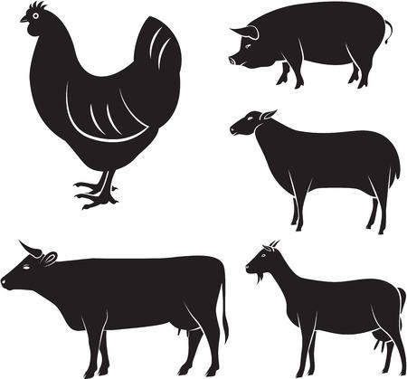 농장 동물의 벡터 설정 닭, 소, 양, 염소, 돼지