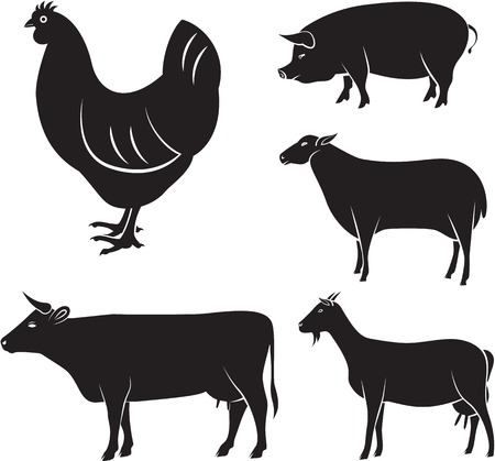 animal silhouette: vector set of farm animals chicken, cow, sheep, goat, pig