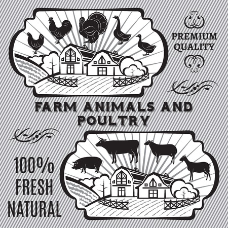 Farm animals and poultry on background with farm Vector