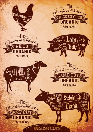 vector diagram cut carcasses of chicken, pig, cow, lamb Vector
