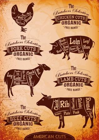 carcasses de poulet, porc, vache, agneau schéma coupées
