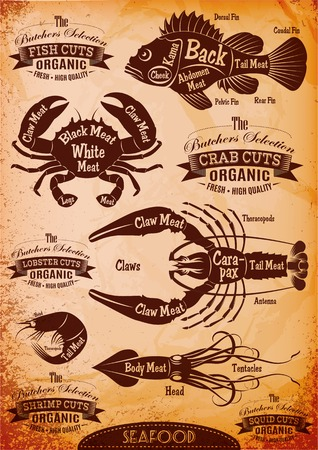 set of diagram cut carcasses seafood Illustration