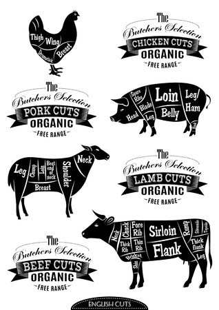 british foods: diagram cut carcasses of chicken, pig, cow, lamb