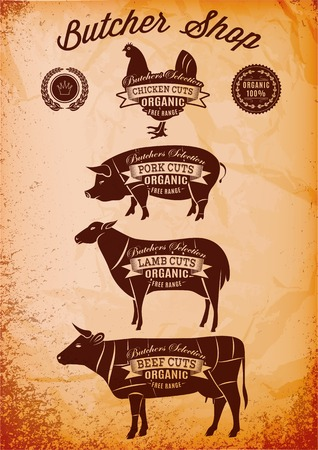 vector diagram cut carcasses of chicken, pig, cow, lamb