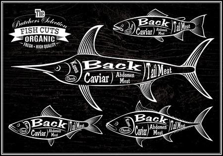 butchers: vector diagram cut carcasses salmon, swordfish, herring, tuna
