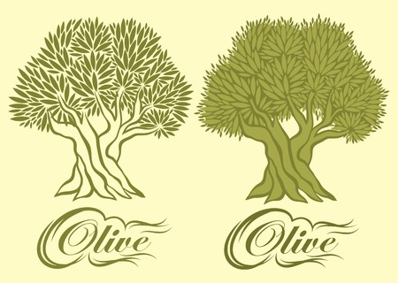 vector pattern with an olive tree for packaging Vector