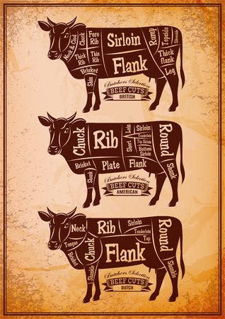 beef cuts: vector poster with three different diagram cutting cows