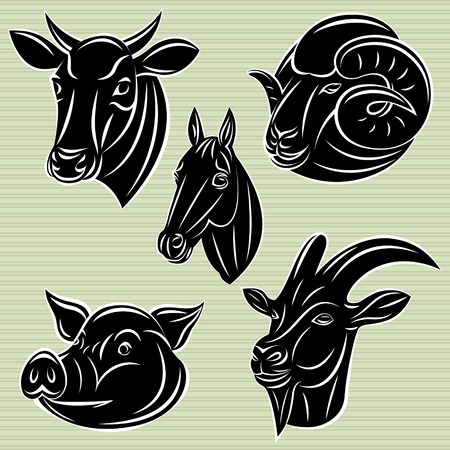 horse meat: collection of vector heads animals for design