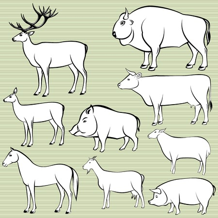 veal: Set of monochrome wild and domestic animals for design Illustration