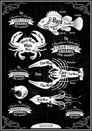 set of diagram cut carcasses seafood Vectores