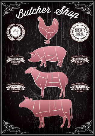 vector diagram cut carcasses of chicken, pig, cow, lamb