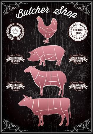 vectordiagram gesneden karkassen van kip, varken, koe, lam