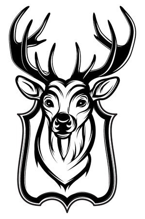 whitetail deer: vector illustration of a stags head as a trophy Illustration