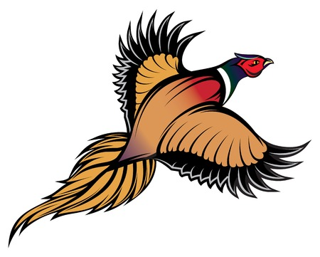vector illustration of a stylish multi-colored flying pheasant Çizim