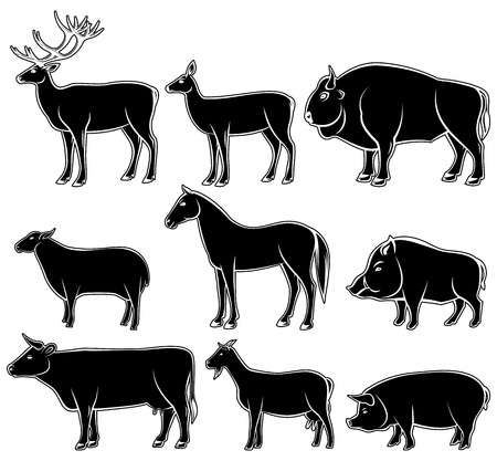 horse meat: Set of monochrome wild and domestic animals for design Illustration