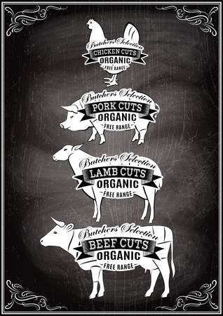 veal: vector diagram cut carcasses of chicken, pig, cow, lamb
