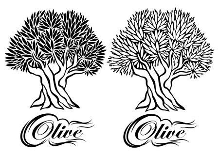vector pattern with an olive tree for packaging