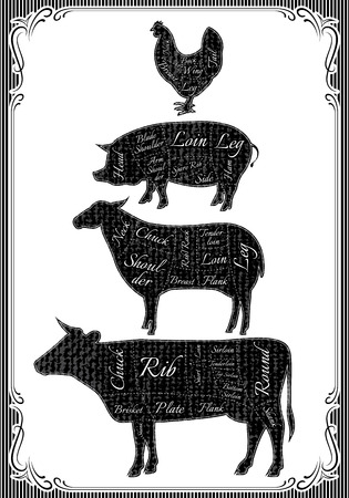 diagram cut carcasses of chicken, pig, cow, lamb Vector