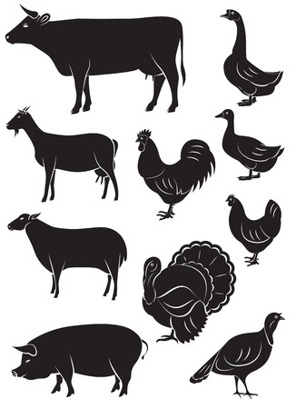 domestic animals: set of vector icons with farm animals and birds