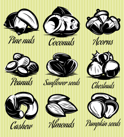 cashew: set of symbols patterns of different seeds, nuts, fruits