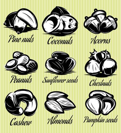 chestnut tree: set of symbols patterns of different seeds, nuts, fruits