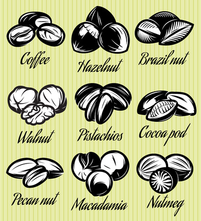brazil nut: set of symbols patterns of different seeds, nuts, fruits