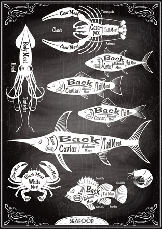 fillet: vector set of stilysh diagrams cut of different seafood carcasses Illustration