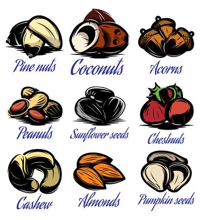 eating fruit: Conjunto de s�mbolos de patrones de colores diferentes semillas, frutos secos, frutas Vectores